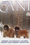 i_nostri_cani_gen_2012